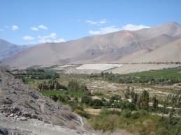 Seis grupos de inversionistas sondean licitación de 2.272 hectáreas en Valle del Huasco por US$ 19 millones