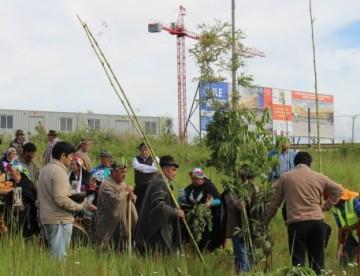 Realizan ceremonia mapuche en terreno donde se construirá el Hospital de Carahue