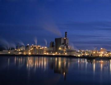 Arauco inicia construcción de planta en EEUU
