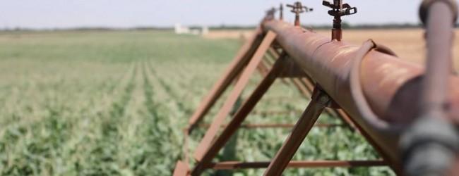 La tecnología española que promete luchar contra la sequía en el mundo
