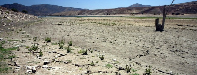 Construcción de pozos y megaembalses devastan Petorca