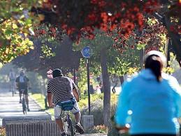 Norma que mejora espacios públicos regresa a Contraloría